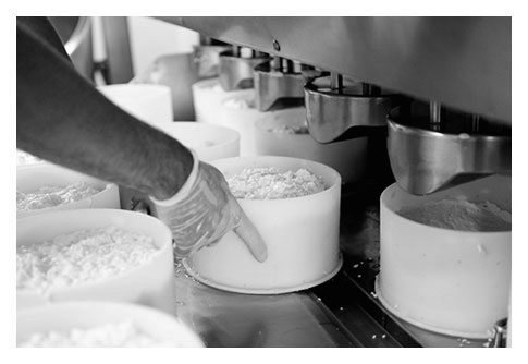 fabrication fromage saint-nectaire fermier chantaduc moulage