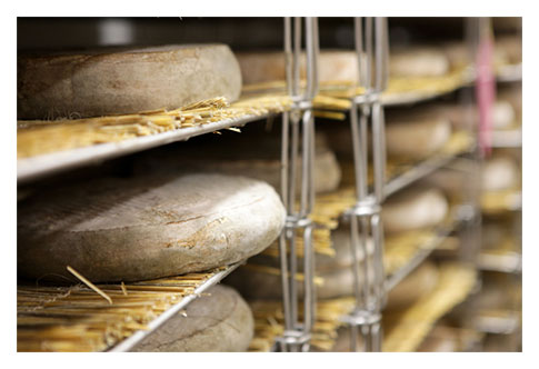 Fabrication fromage Saint-Nectaire fermier Chantaduc affinage-2